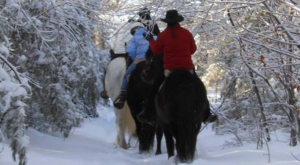 The Winter Horseback Riding Trail In Maine That's Pure Magic