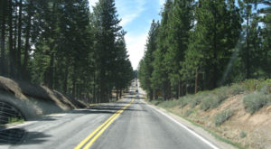 Take This Road To Nowhere In Northern California To Get Away From It All