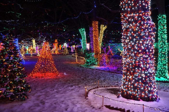 Rhema Christmas Lights The Magical Christmas Attraction