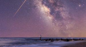 The 23 Most Jaw Dropping Photos Taken In South Carolina in 2016