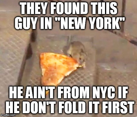 rk5ca 15 hilariously accurate memes about new york