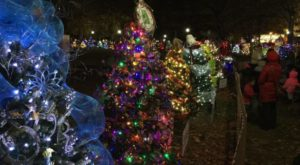 The Christmas Tree Trail In Alabama That Will Fill You With Holiday Cheer