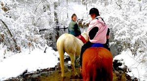 The Winter Horseback Riding Trail In Massachusetts That's Pure Magic