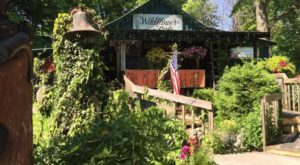 """The """"Wildflower Cafe"""" is one of Mentone's most unique restaurants. People will drive for hours to experience everything this cafe has to offer."""