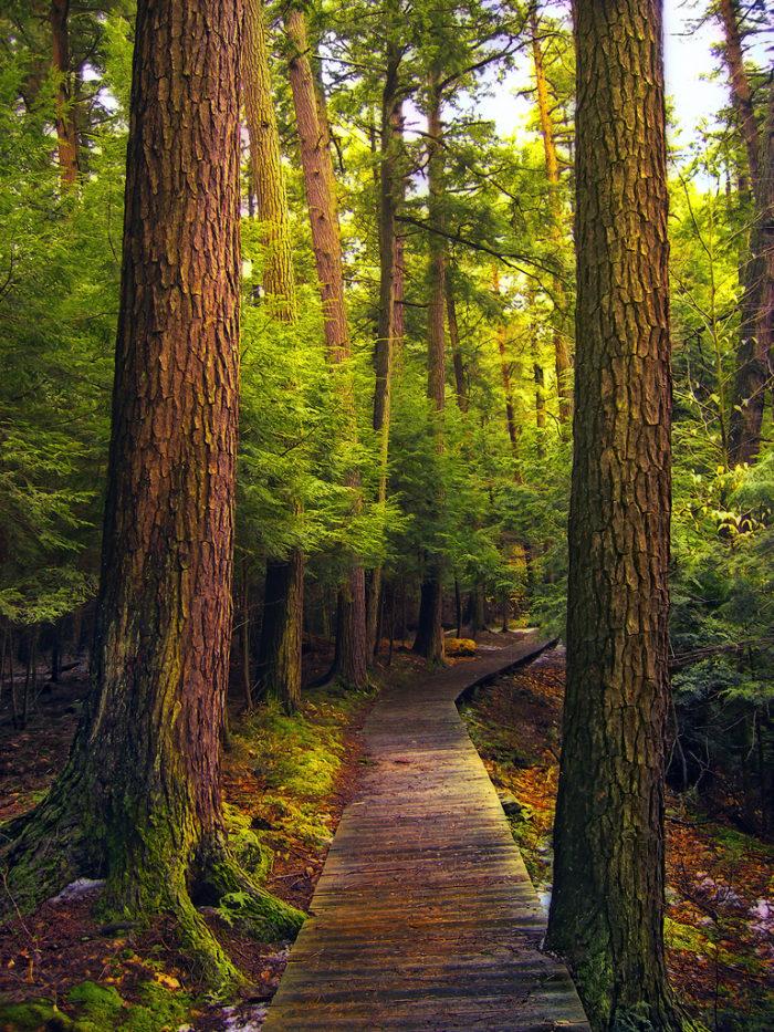 Shhh These 9 Hidden Places Are Pennsylvania S Best Kept Secrets