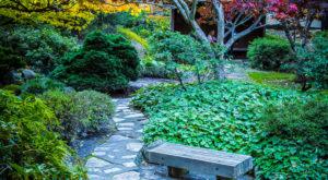 The Hidden Park That Will Make You Feel Like You've Discovered Oregon's Best Kept Secret