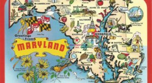 15 Things Everyone Who's Moved Away From Maryland Has Thought At Least Once