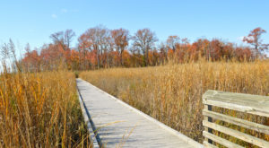 12 Places In Delaware Way Out In The Boonies But So Worth The Drive