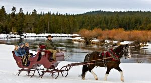 The Winter Horse-Drawn Carriage Ride In Oregon That's Pure Magic