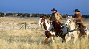 Most People Don't Know The Pony Express Still Operates In Arizona