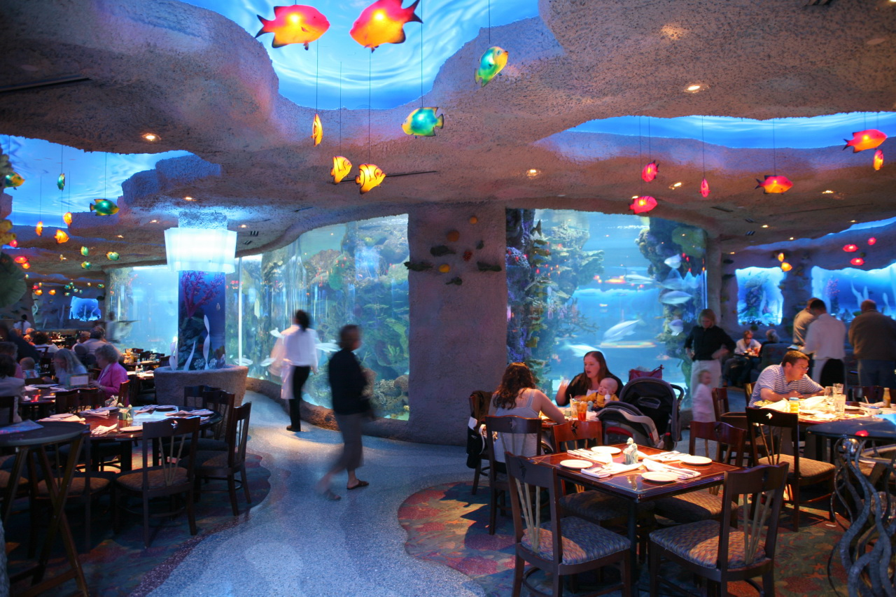 The Tennessee Aquarium Restaurant is the Most Unique in ...