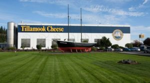 You're Guaranteed To Love A Trip To This Epic Cheese Factory In Oregon