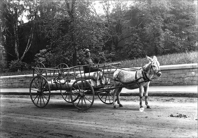 11 Rare Photos Of New Hampshire 39 S Logging History