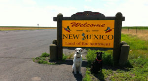 18 Things Everyone Who's Moved Away From New Mexico Has Thought At Least Once