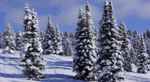 The Snowiest Spot In Idaho Is Completely Unexpected But Absolutely Stunning