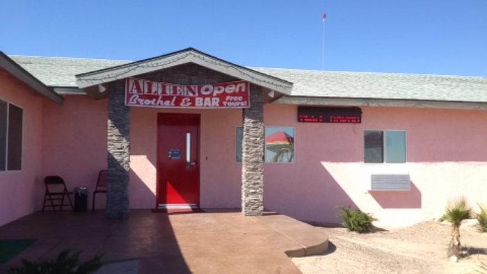 Area 51 Alien Cathouse (Amargosa Valley)