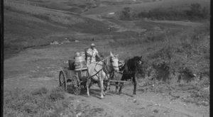 These 19 Rare Photos Show North Dakota's Farming History Like Never Before