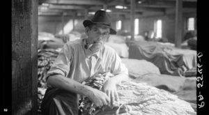 These 15 Rare Photos Show North Carolina's Tobacco History Like Never Before