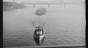 10 Very Rare Photos Taken During WWII In Portland