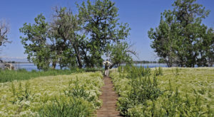 The Hidden Park That Will Make You Feel Like You've Discovered Denver's Best Kept Secret