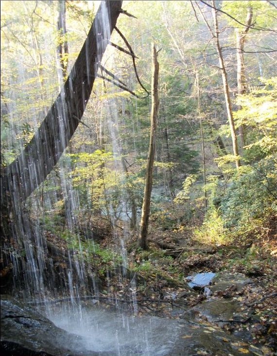 Tomlinson Run State Park Is One Of West Virginia S Best