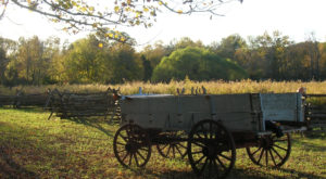 11 Pictures Of Kentucky That Will Make You Yearn For The Good Ole Days