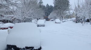 State Of Emergency Declared As Oregon Battles Snowmageddon