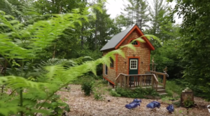 This Tiny Maine Cabin In The Middle Of Nowhere Will Enchant You