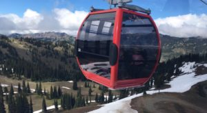 This Gondola Ride In Washington Will Take You To New Heights