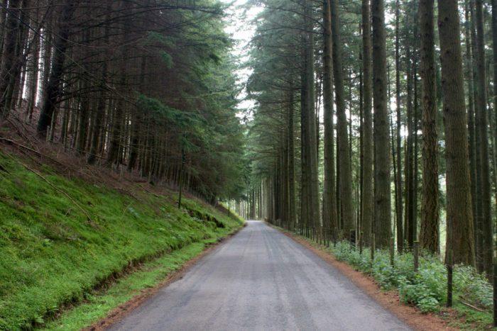 Idaho Bucket List Road Trips