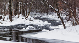 The Deadly History Of This Connecticut Park Is Terrifying But True