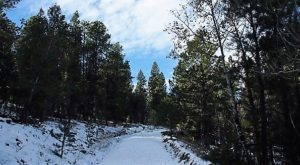 The Easy 1-Mile Winter Hike In Denver That's Positively Bewitching