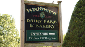 You're Guaranteed To Love A Trip To This Epic Dairy Farm In Rhode Island