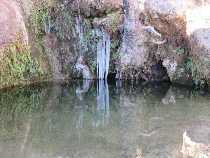 First Creek Canyon Trail
