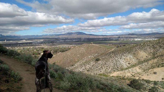 hike Nevada