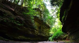Indiana Has A Grand Canyon And It's Too Beautiful For Words