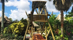 The Unique Park Everyone In Florida Should Visit At Least Once