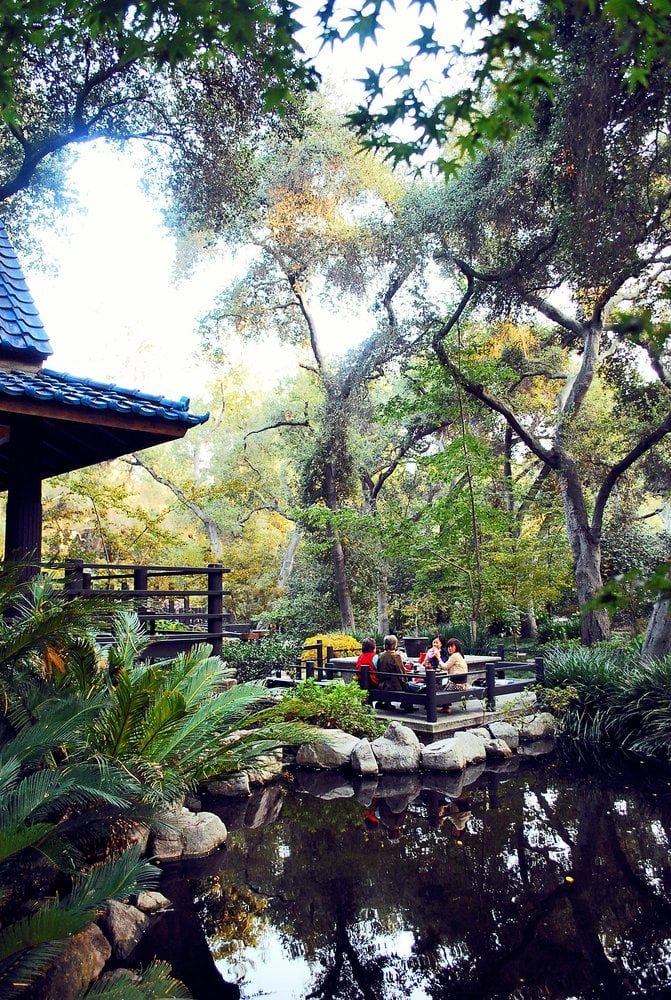 Descanso Gardens May Be The Most Underrated Place In All