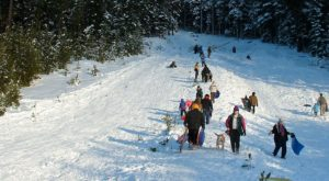 Here Are the 4 Best Places To Go Sled Riding Near Portland This Winter