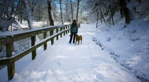 11 Picturesque Trails In West Virginia That Are Perfect For Winter Hiking