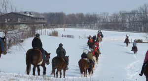 The Winter Horseback Riding Trail In Illinois That's Pure Magic