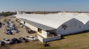 You'll Never Want To Leave This Massive Flea Market In Mississippi