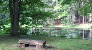 Escape To These 10 Hidden Oases In Pennsylvania To Find Peace And Quiet