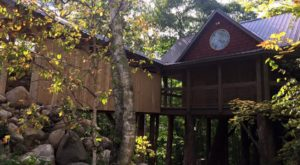 This Treehouse in Minnesota Will Give You An Unforgettable Experience