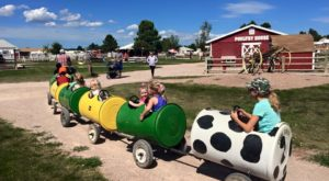 Old Macdonald's  Farm Is Right Here In South Dakota And You'll Want To Visit