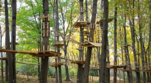 There's An Adventure Park Hiding In The Middle Of A Michigan Forest And You Need To Visit