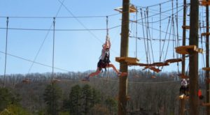 There's An Adventure Park Hiding In The Middle Of A Georgia Forest And You Need To Visit