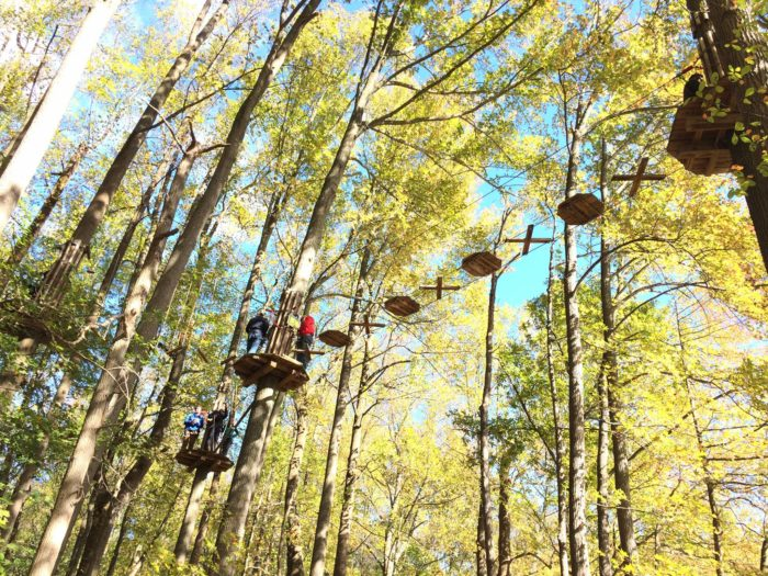 Go Ape Lums Pond Is A Fun Adventure Park In The Forest In