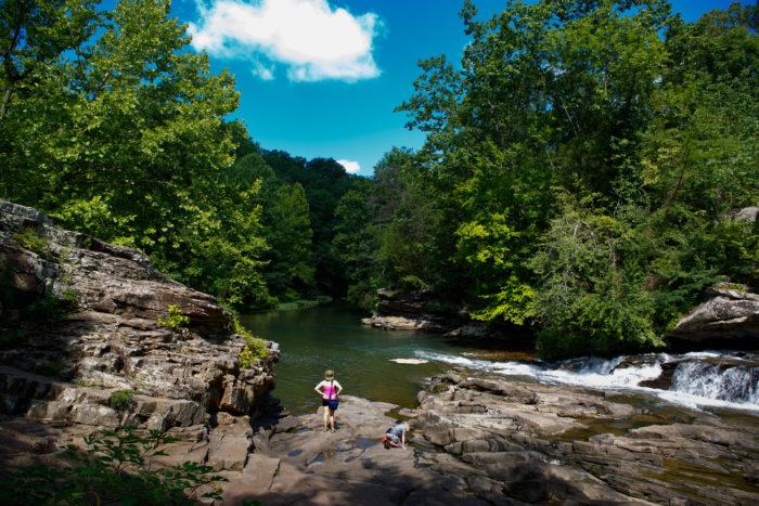 10 most beautiful photos of turkey creek nature preserve