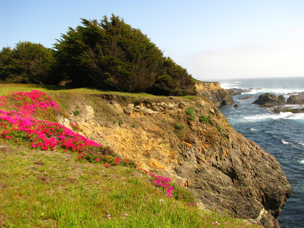 14 Of The Most Exciting And Beautiful Places To Visit In Northern California